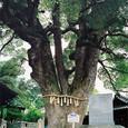 Onomichi_071