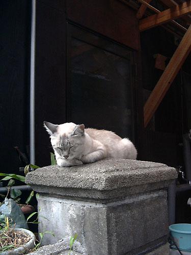 Onomichi_103